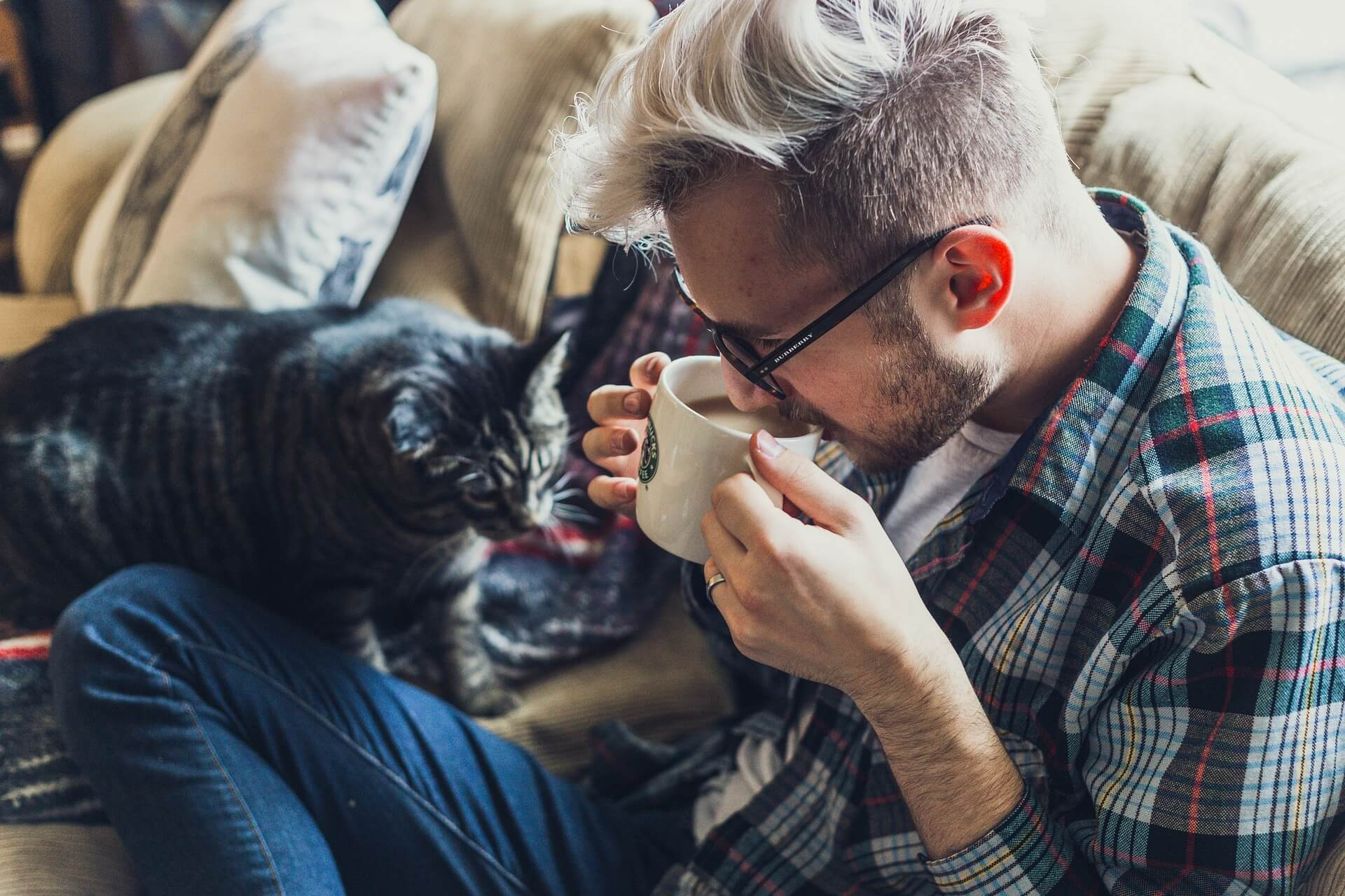 Whether or not you are renting to pet owners, make sure you have a fully formed pet policy.